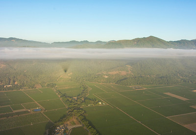 Balloon shadow over the valley - Napa, California